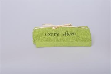 "Lavette: ""carpe diem"" - Lavette Carpe diem grün"